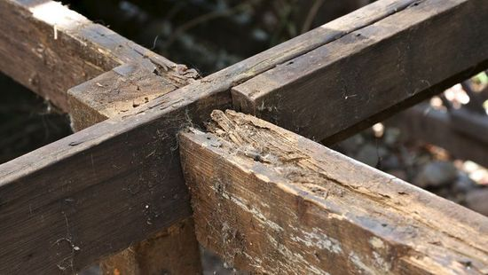 An example of dry rot